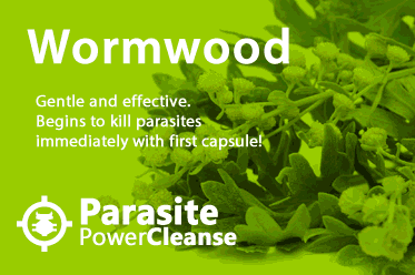 wormoow all natural parasite power cleanse
