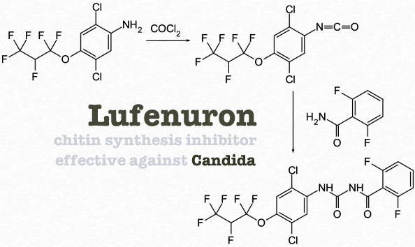 Lufenuron Chitin Synthesis Inhibitor Candida Cleanser