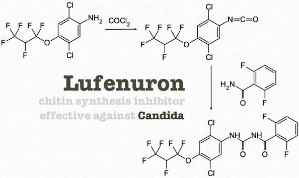 Lufenuron Chitin Synthesis Inhibitor Ccws Candida Cleanser