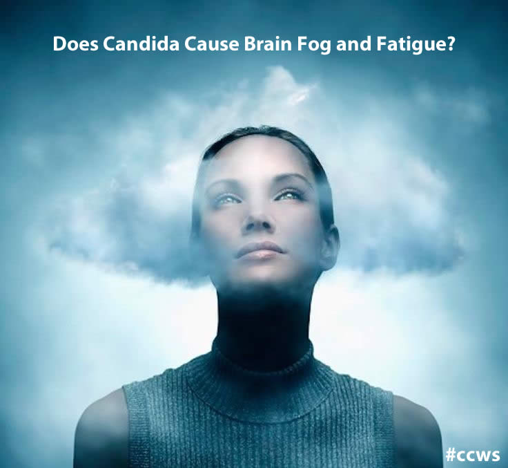 brain fog fatigue candida